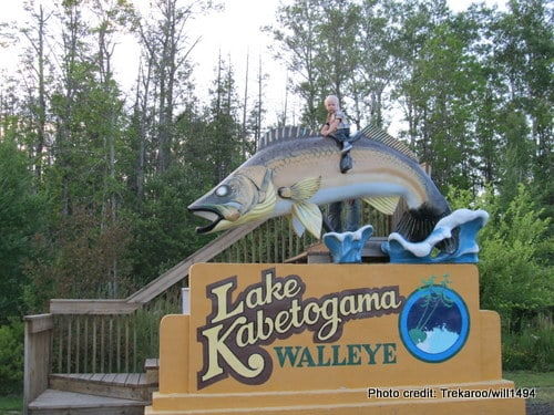 Lake Kabetogama Walleye