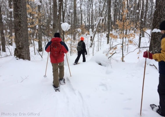 Snowshoeing - Gifford