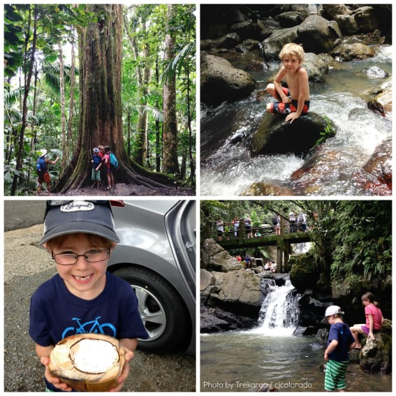 Puerto Rico Family Travel, El Yunque National Forest