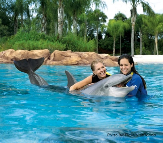 SeaWorld Orlando Educational Animal Encounters