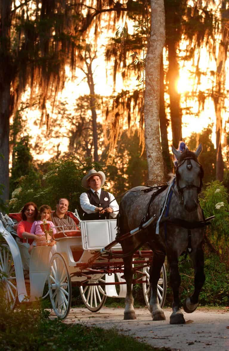 Things to Do at Disney World without theme park tickets Visit fort Wilderness