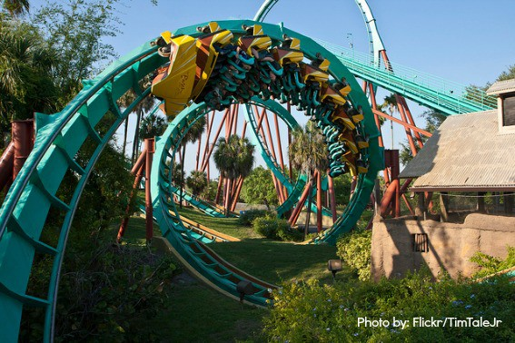 Top ten things to do in tampa bay for families trekaroo Busch gardens tampa water park