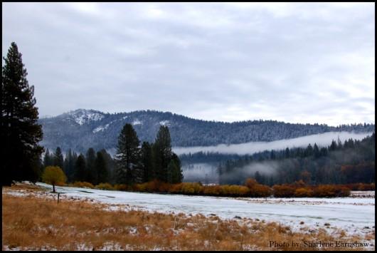 South Yosemite