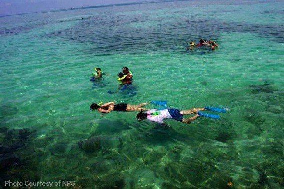 Dry-tortugas-national-park-snorkeling