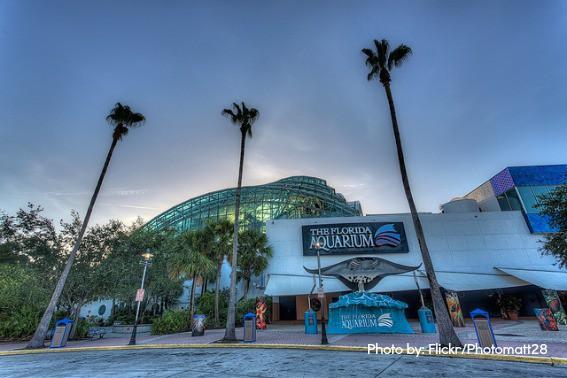 Florida-Aquarium