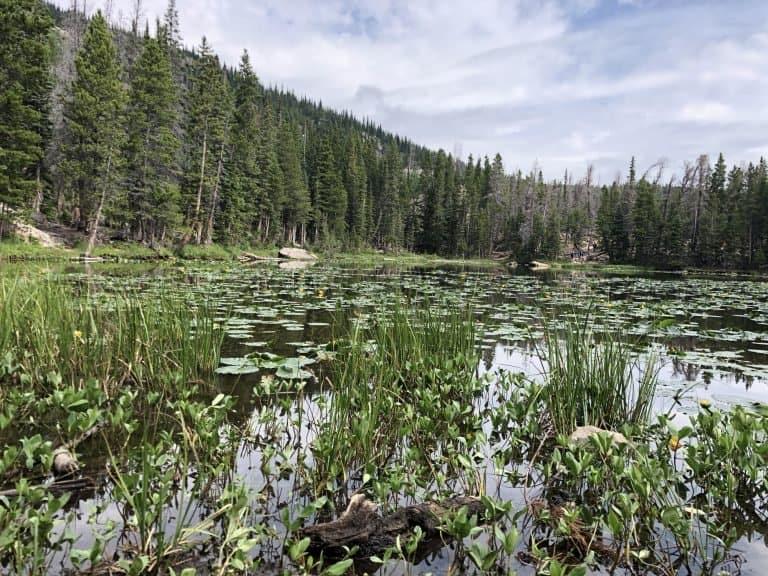 Nymph Lake on the Emerald Lake Trail