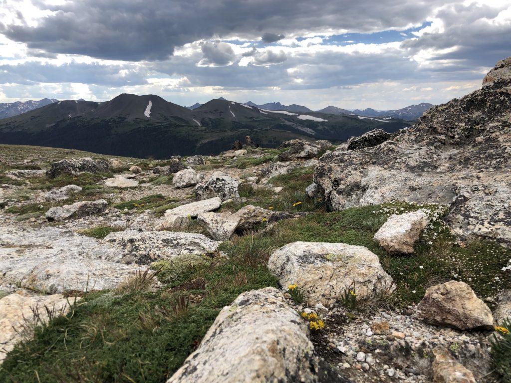 Life at 13,000 Feet on Trail Ridge Road | photo by Sharlene Earnshaw