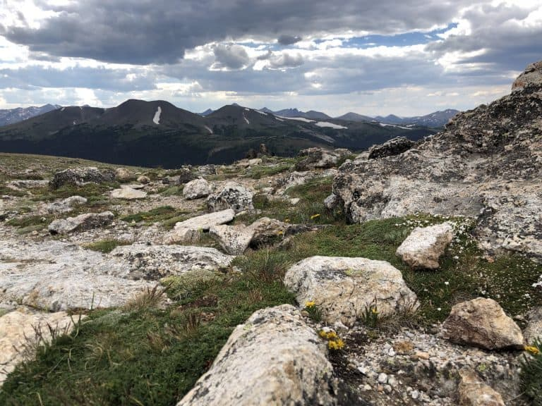Life at 13,000 Feet on Trail Ridge Road | photo by Sharlene Earnshaw