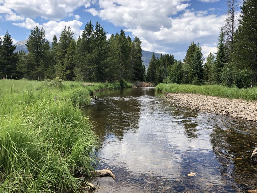 Coyote Valley is one of the best things to do in Rocky Mountain National Park with kids