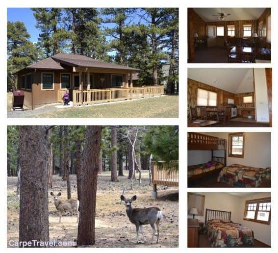 YMCA_cabin
