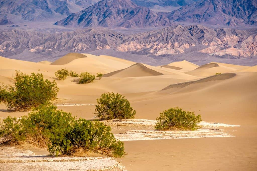 Death Valley is one of the best national parks for kids