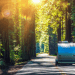 Best California Campgrounds for Families FI
