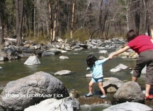 Best Campgrounds for Families in the Western States