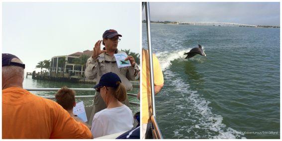 Dolphin Explorer Naples, FL