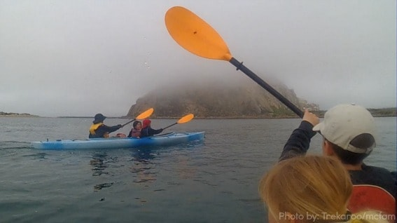 Kayaking-Morro-Bay-Trekaroo