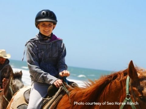 Five Family-Friendly Things to do in Half Moon Bay