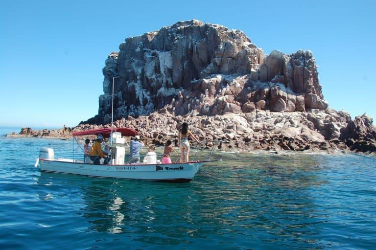 Los Islotes Sea Lions La Paz Mexico