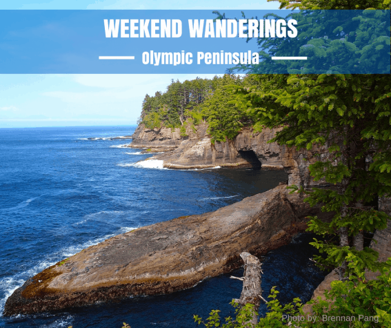 Weekend Wanderings to the Olympic Peninsula