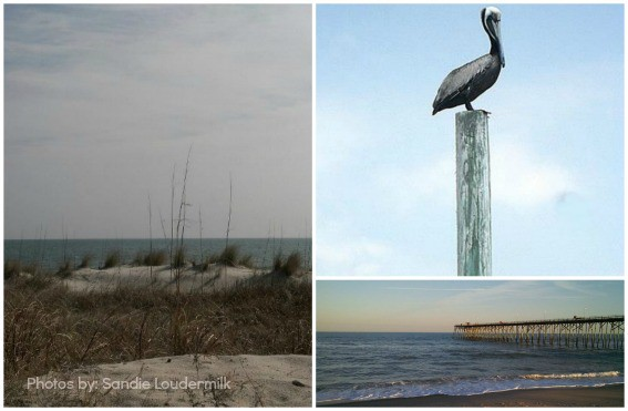 Beaches for families in North Carolina