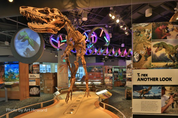 Fantastic Kid-Friendly Science Museums Around the United States
