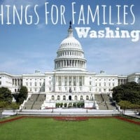 top-10-things-for-families-to-do-in-DC