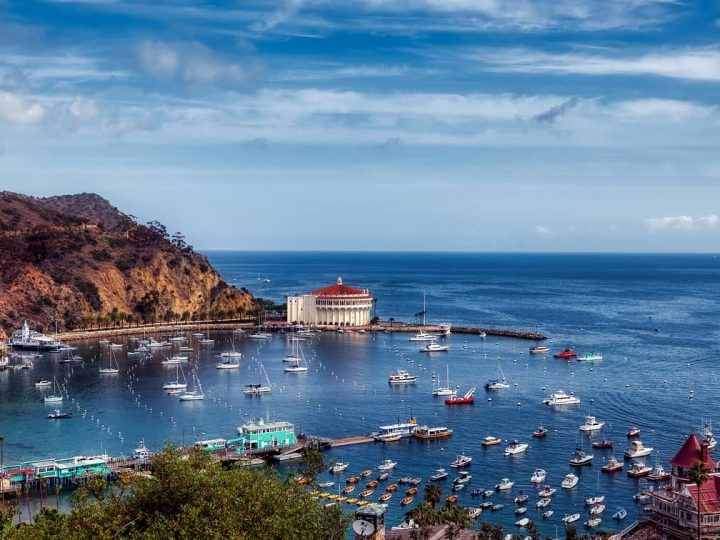 Catalina: An Island Vacation Close To Home