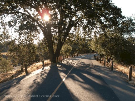 American-River-Parkway-Sacramento-Trekaroo-Family-Travel