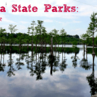 Georgia State Parks Family Guide
