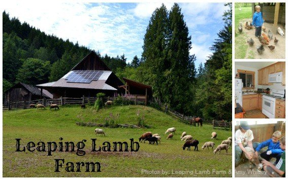 Leaping-Lamb-Farm-Collage-Trekaroo-Text-Redo