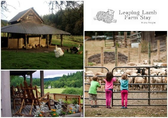 Leaping Lamb Farm Stay