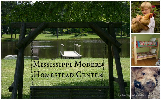 Mississippi-Modern-Homestead-Center-Collage-Trekaroo