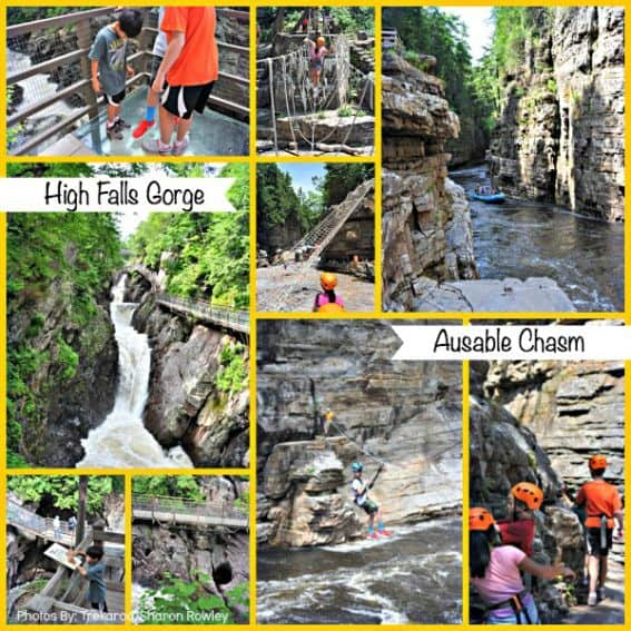 Nature Adventures Collage edit