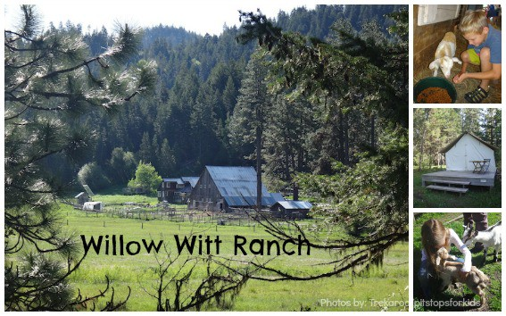 Willow-Witt-Ranch-Collage-Trekaroo