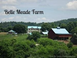 belle-meade-farm-trekaroo