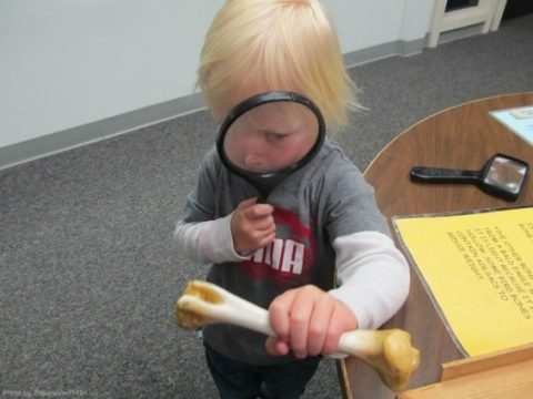 Road School: Crafting an Engaging Educational Trip for Kids