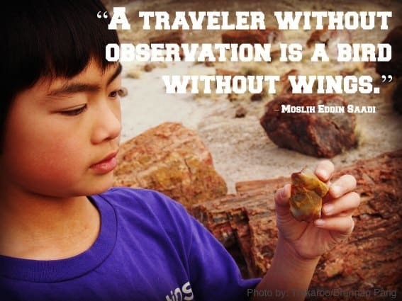 Educational-Travel-Observation