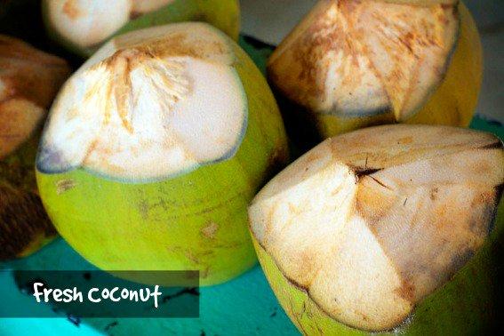 Punta-Cana-fresh-coconut