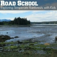 Road-School-Exploring-Temperate-Rainforests-with-kids square