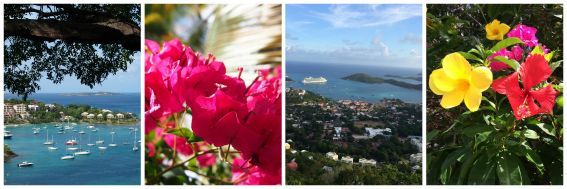 USVI Views and Flora Collage