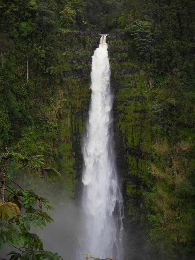 akaka falls photo