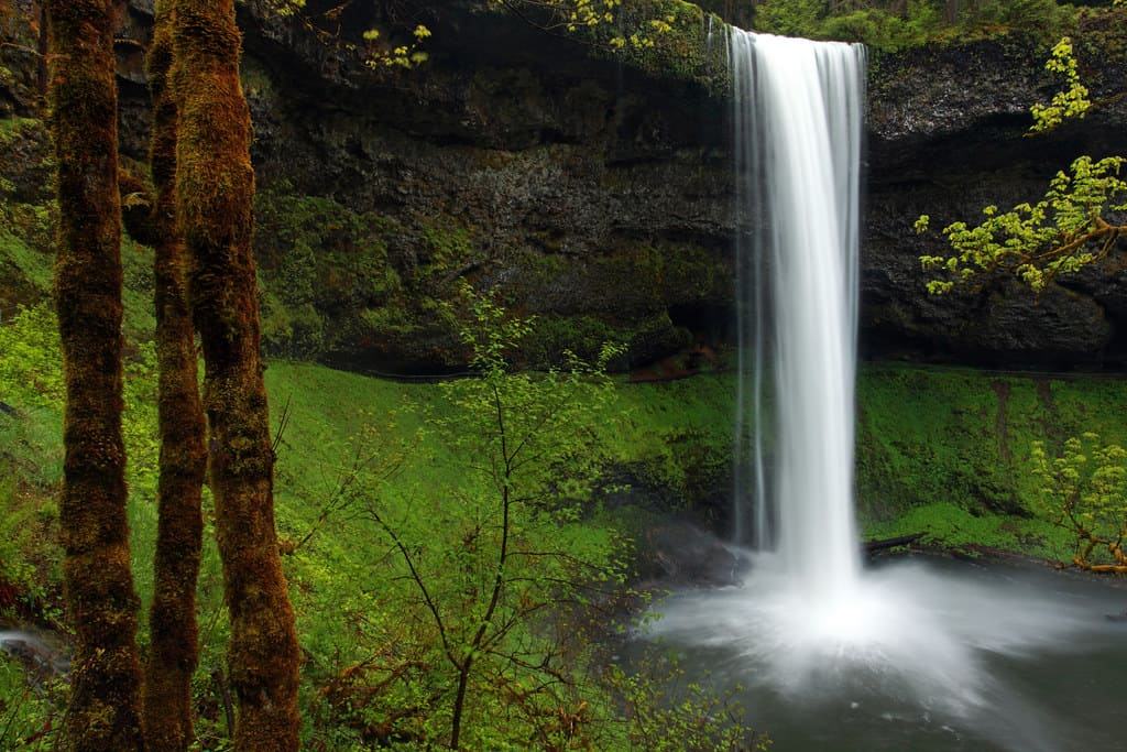 Silver Falls state park is home to some of the best waterfalls in the US