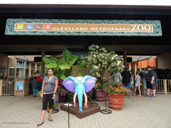 Cleveland Zoo Kid-Friendly Reviews