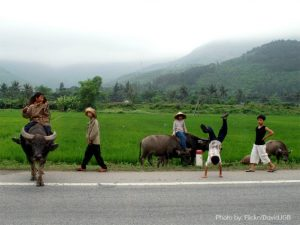 Kids international travel 3 Vietnam