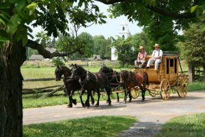 upper canada village-horse and buggy
