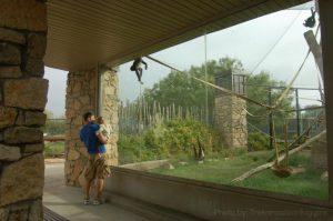 Abilene-zoo-Trekaroo-reviews
