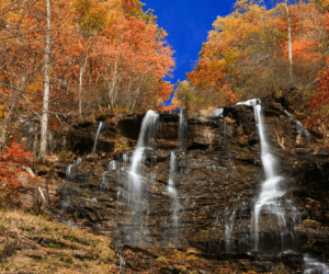 best places to view fall color in Georgia FI
