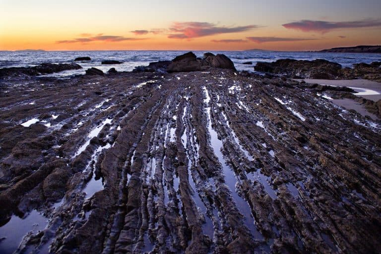 Best Tide Pools in California