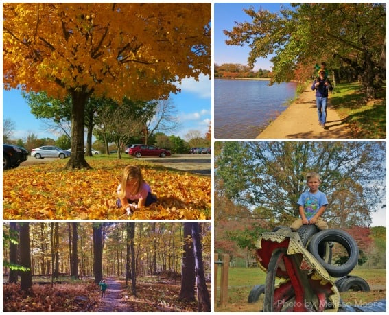 Fall Kids Outdoors Tidal Basin Appalachian Mountains