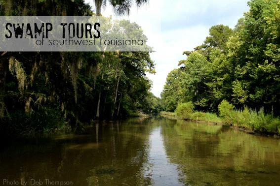 Lousiana Swamp Tour 567x378