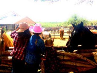 Tanque Verde Ranch – Western Adventures in the Sonoran Desert